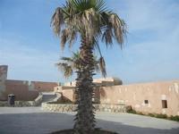 Bastione Conca - 13 maggio 2012  - Trapani (958 clic)