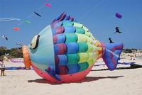 4° Festival Internazionale degli Aquiloni - 24 maggio 2012 - foto di Nicolò Pecoraro  - San vito lo capo (304 clic)