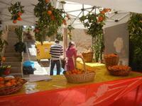 Festa di Primavera - Sagra della salsiccia, del pane cunzato, delle arance di Calatafimi Segesta - aspettando la festa del SS. Crocifisso - 22 aprile 2012  - Calatafimi segesta (470 clic)