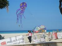 4° Festival Internazionale degli Aquiloni - 24 maggio 2012  - San vito lo capo (253 clic)
