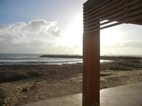 spiaggia invasa dalle alghe 8 gennaio 2012  - Marinella di selinunte (460 clic)