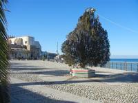 Piazza Petrolo 13 gennaio 2012  - Castellammare del golfo (792 clic)