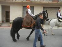 SPERONE - sfilata di cavalli - festa San Giuseppe Lavoratore - 29 aprile 2012  - Custonaci (767 clic)