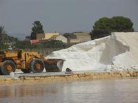 saline - 5 agosto 2012  - Nubia (254 clic)