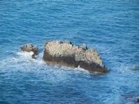 Cala Bianca - scoglio - 14 aprile 2012  - Castellammare del golfo (411 clic)