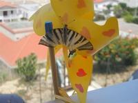 Zona Plaja - farfalla su girandola - 29 luglio 2012  - Alcamo marina (306 clic)