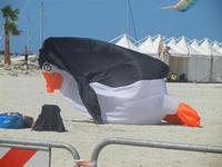 4° Festival Internazionale degli Aquiloni - 24 maggio 2012  - San vito lo capo (271 clic)