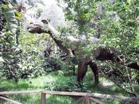 BIOPARCO di Sicilia - dinosauri - 17 luglio 2012 - Foto di Nicolò Pecoraro  - Villagrazia di carini (1705 clic)