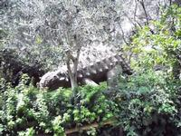 BIOPARCO di Sicilia - dinosauri - 17 luglio 2012 - Foto di Nicolò Pecoraro  - Villagrazia di carini (370 clic)