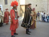 Corteo Rievocazione Storica dell'investitura a 1° Principe della Città di Carlo d'Aragona e Tagliavia - 26 maggio 2012  - Castelvetrano (492 clic)