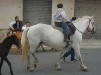 SPERONE - sfilata di cavalli - festa San Giuseppe Lavoratore - 29 aprile 2012  - Custonaci (734 clic)