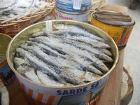 Primo Presepe artistico lu piscaturi - particolare: sarde salate - 8 gennaio 2012  - Marinella di selinunte (2129 clic)