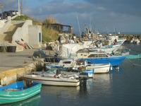porto 8 gennaio 2012  - Marinella di selinunte (406 clic)