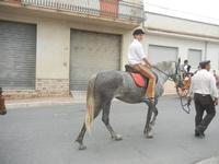 SPERONE - sfilata di cavalli - festa San Giuseppe Lavoratore - 29 aprile 2012  - Custonaci (711 clic)