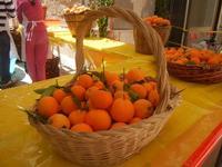 Festa di Primavera - Sagra della salsiccia, del pane cunzato, delle arance di Calatafimi Segesta - aspettando la festa del SS. Crocifisso - 22 aprile 2012  - Calatafimi segesta (559 clic)
