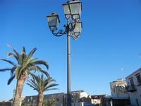 palme e lampione Piazza Petrolo - 13 gennaio 2012  - Castellammare del golfo (420 clic)