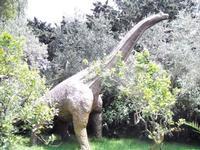 BIOPARCO di Sicilia - dinosauri - 17 luglio 2012 - Foto di Nicolò Pecoraro  - Villagrazia di carini (325 clic)