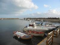 porto 8 gennaio 2012  - Marinella di selinunte (418 clic)