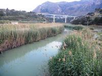 Fiume San Bartolo - 18 maggio 2012  - Castellammare del golfo (447 clic)