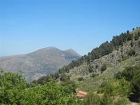 Santuario Madonna del Romitello - panorama pineta e monti - 9 maggio 2012  - Borgetto (983 clic)
