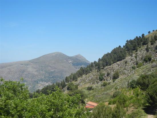 Santuario Madonna del Romitello - panorama pineta e monti - BORGETTO - inserita il 13-Nov-14