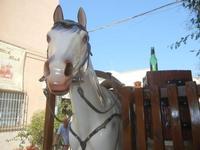 giochi in via Savoia - 23 agosto 2012  - San vito lo capo (1049 clic)