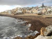 spiaggia invasa dalle alghe e case 8 gennaio 2012  - Marinella di selinunte (384 clic)