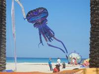 4° Festival Internazionale degli Aquiloni - 24 maggio 2012  - San vito lo capo (255 clic)