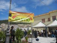 Festa di Primavera - 22 aprile 2012  - Calatafimi segesta (499 clic)