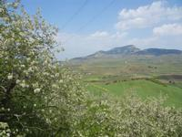 SIRIGNANO - Agriturismo - panorama agreste e Monte bonifato all'orizzonte - 1 maggio 2012  - Monreale (532 clic)