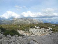 Riserva Naturale Orientata Capo Rama - 15 aprile 2012  - Terrasini (1844 clic)