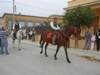 SPERONE - sfilata di cavalli - festa San Giuseppe Lavoratore - 29 aprile 2012  - Custonaci (650 clic)