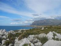 Riserva Naturale Orientata Capo Rama - 15 aprile 2012  - Terrasini (1562 clic)