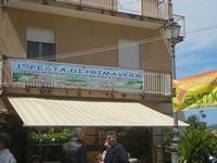 Festa di Primavera - 22 aprile 2012  - Calatafimi segesta (475 clic)