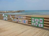 struttura in legno sulla spiaggia e cartelli di benvenuto alla primavera - 25 marzo 2012  - Marinella di selinunte (584 clic)