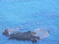 panorama dal Belvedere - scoglio in un mare fantastico - 30 agosto 2012  - Macari (353 clic)