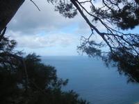 panorama dal Belvedere - Golfo di Castellammare - 22 gennaio 2012  - Castellammare del golfo (336 clic)