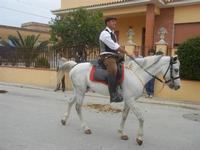 SPERONE - sfilata di cavalli - festa San Giuseppe Lavoratore - 29 aprile 2012  - Custonaci (647 clic)