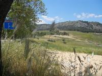 Tempio e panorama - 27 maggio 2012  - Segesta (1304 clic)