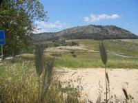 Tempio e panorama - 27 maggio 2012  - Segesta (1049 clic)