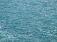 mare e gabbiano - R.N.O. Capo Rama - 15 aprile 2012  - Terrasini (1467 clic)