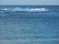 Baia di Guidaloca - onde - 14 aprile 2012  - Castellammare del golfo (419 clic)