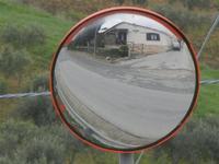 riflesso - 22 gennaio 2012  - Buseto palizzolo (843 clic)