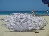 4° Festival Internazionale degli Aquiloni - 24 maggio 2012  - San vito lo capo (330 clic)