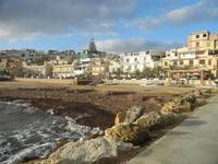 case sulla spiaggia invasa dalle alghe 8 gennaio 2012  - Marinella di selinunte (1062 clic)