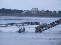 estrazione del sale - Riserva Naturale Orientata Saline di Trapani e Paceco - 13 settembre 2012  - Trapani (305 clic)