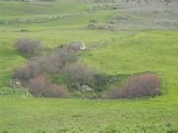 panorama agreste - 4 marzo 2012  - Buseto palizzolo (506 clic)