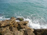 rocce e mare - 25 marzo 2012  - Marinella di selinunte (477 clic)
