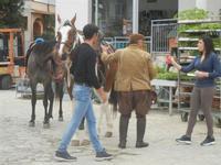 cavalli - PURGATORIO - preparativi della sfilata di cavalli - festa San Giuseppe Lavoratore a SPERONE - 29 aprile 2012  - Custonaci (699 clic)