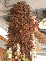 la casa del cous cous sanvitese peperoncino, cipolle ed origano - 18 agosto 2012  - San vito lo capo (488 clic)